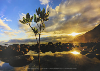 3rd Place, Jan Aliling, Let There Be Light, CP
