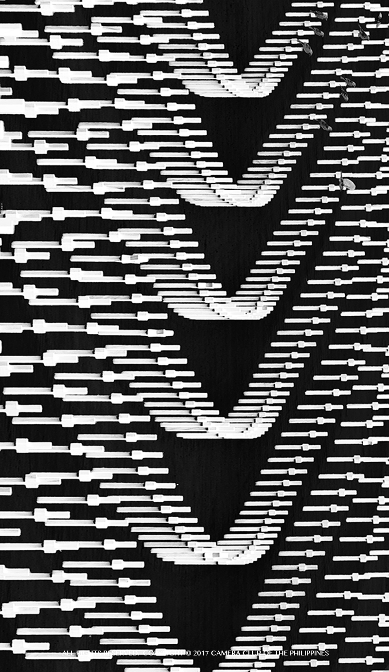 20170206_BW_PATTERNS THEME_4.4916_Ortiz,Rey_95_second