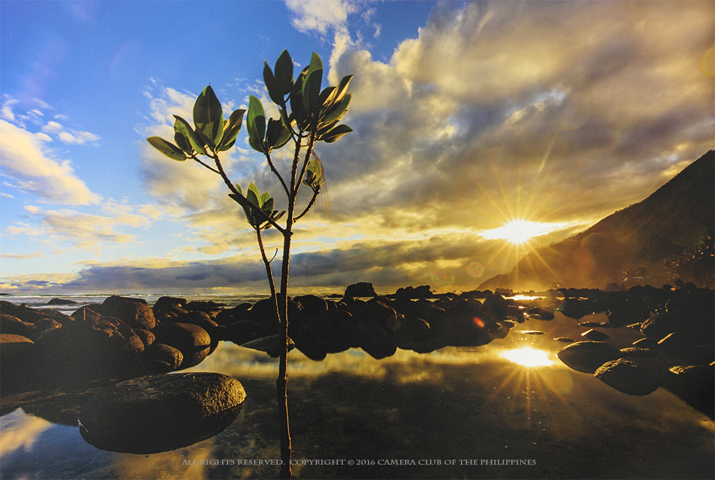 3rd_20160606_let-there-be-light_-aliling-jan_